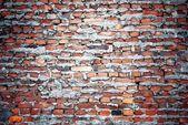 Mur de briques avec texture de ciment — Photo