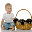 Royalty-Free Stock Photo: The laughing child with a basket of puppies