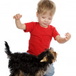 Happy child playing with dog — Stock fotografie #9917378