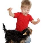 niño feliz jugando con perro — Foto de Stock