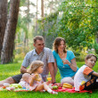 Happy family having fun outdoors on a sunny day — Stock Photo #9922099