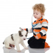 The child examining dog and listening with stethoscope during checkup. — Foto de Stock
