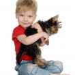 Royalty-Free Stock Photo: The child embraces a yorkshire terrier\'s.
