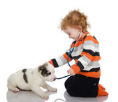 Cute kid making a checkup of a puppy dog. — Stock Photo