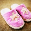 Slippers — Stock Photo #10548633