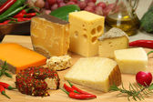 Cheese varieties — Stock Photo