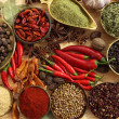 Spices and herbs — Stock Photo #10422968