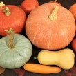 Pumpkins. — Stock Photo #10443637