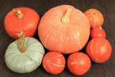 Pumpkins. — Stock Photo
