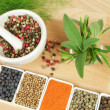 Spices and herbs. — Stock Photo