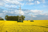 Electric pylons and farmland — Stock Photo