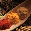 Spice powders — Stock Photo