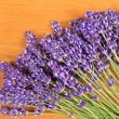 Lavender — Stock Photo #8604190