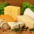 Cheese — Stock Photo #8956027