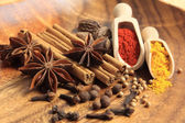 Arometic spices — Stock Photo