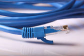 Computer Network Cable — Stock Photo