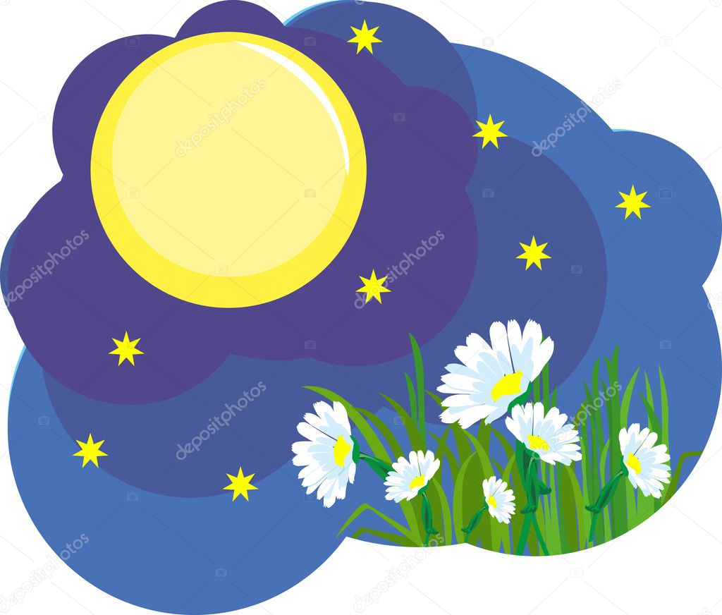Moonlit summer night sky, stars shine and the moon on the earth at night blooming white flowers — Stock Vector #10558659