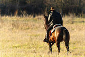 Horse ride — Stock Photo