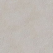 Seamless texture of a skin — Stock Photo