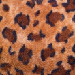 Texture of leopard colouring — Stock Photo #9595062