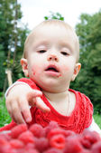 Year-old girl eating raspberries — Stock Photo