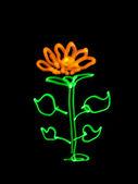 Resumo uma flor, recebido com estilo fotográfico freezelight — Foto Stock