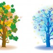 Cold seasons trees — Stock Photo