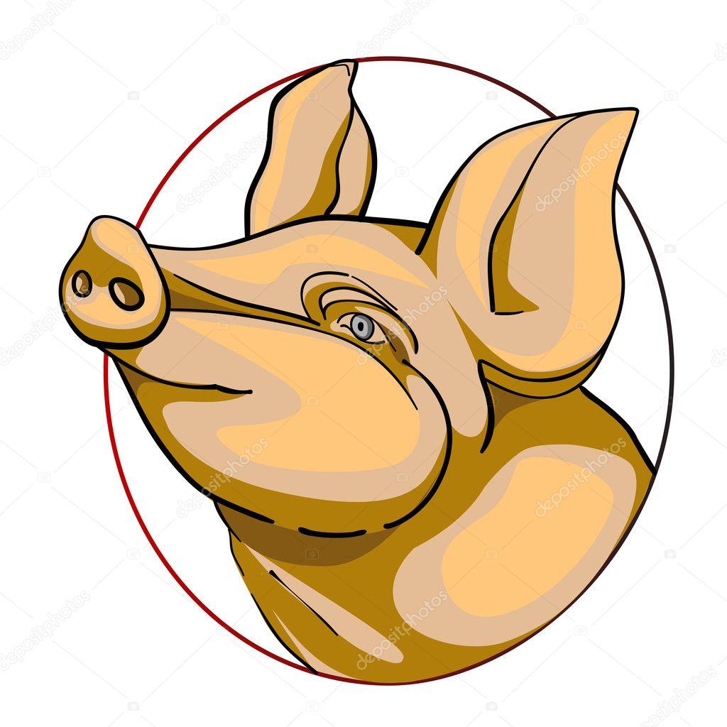 Pig head, chinese zodiac sign isolated on white — Stock Photo #10273999