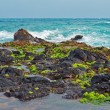 Maui Coastline lava rocks Hawaii Islands — Stock Photo