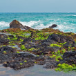 Maui Coastline lavrocks Hawaii Islands — Stock Photo #8758252