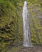 Waimoku Falls in Maui Hawaii — Stock Photo