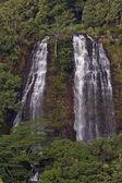 'Opaeka'a Falls — 图库照片