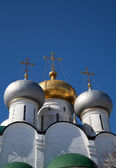Moscow domes. Smolensk Cathedral. — Stock Photo