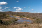 River in dry season. — Stock Photo