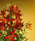 Rode lelies — Stockfoto
