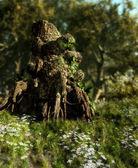 The Druids Stump — Stock Photo