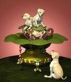 Labrador Puppies — Stockfoto