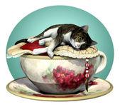 猫 n 杯灰色斑 — 图库照片