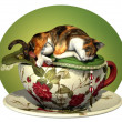 Cat n Cup Calico sleeping - Lizenzfreies Foto