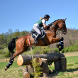 Rider in jumping show — Stock Photo #10348509