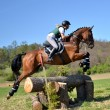Stock Photo: Rider in jumping show