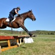 Rider in jumping show — Stockfoto
