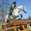 Stock Photo: Rider in jumping show military