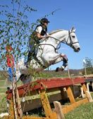 Cavalier dans le jumping show militaire — Photo