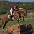 Rider eventing - Stock Photo