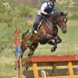 Stock Photo: Rider eventing horse trial