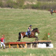 Foto Stock: Rider eventing horse trial