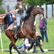Rider in the jumping show - Stockfoto