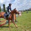 Rider in the jumping show — Foto Stock
