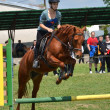 Show jumping — Stock Photo #10587415